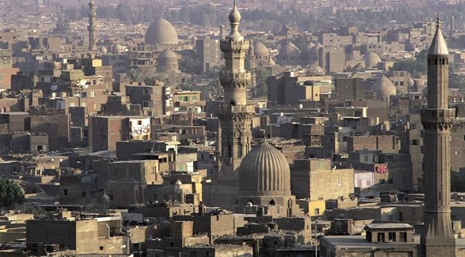 Workshop Cairo 2016: Mechanisms and frameworks of transmission
